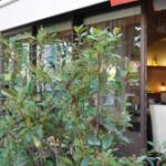 Stars-media vous fait découvrir le restaurant Pasco, à Paris, membre de RestoPartner.